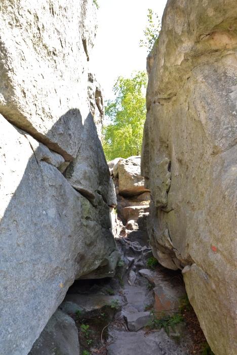W dalszej części szlaku znajdują się przejścia węższe i bardziej strome od tych na zdjęciu.