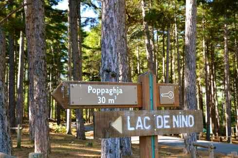 Początek trasy przy leśniczówce Poppaghja (1076 m) znajdującej się w lesie Valdu-Niellu. Le début du sentier près de la maison forestière Poppaghja (1076 m) dans la forêt Valdu-Niellu.