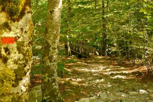 Widziane już wcześniej na blogu biało-czerwone oznaczenie szlaku – GR 20. Déjà vu sur le blog, un balisage blanc-rouge pour le GR 20.