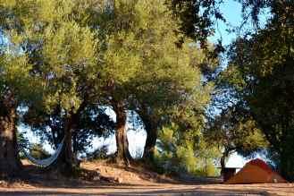 """Poranek na polu namiotowym """"Les Oliviers"""". Le réveil au camping """"Les Oliviers""""."""