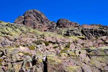 Powrót na przełęcz Vergio (2 godziny). Le retour vers le col de Vergio (2 heures).