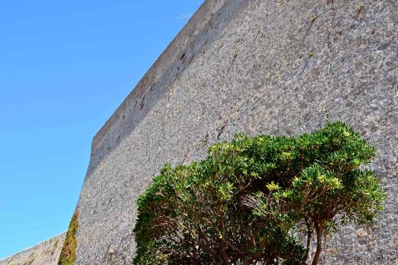 Cytadela. La citadelle de Calvi.