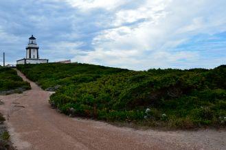 Droga powrotna, kierunek – centrum Bonifacio. Le retour, direction – centre de Bonifacio.