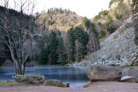Kilkanaście minut marszu przez las i kolejne jezioro na drodze – Fischboedle (794 m).