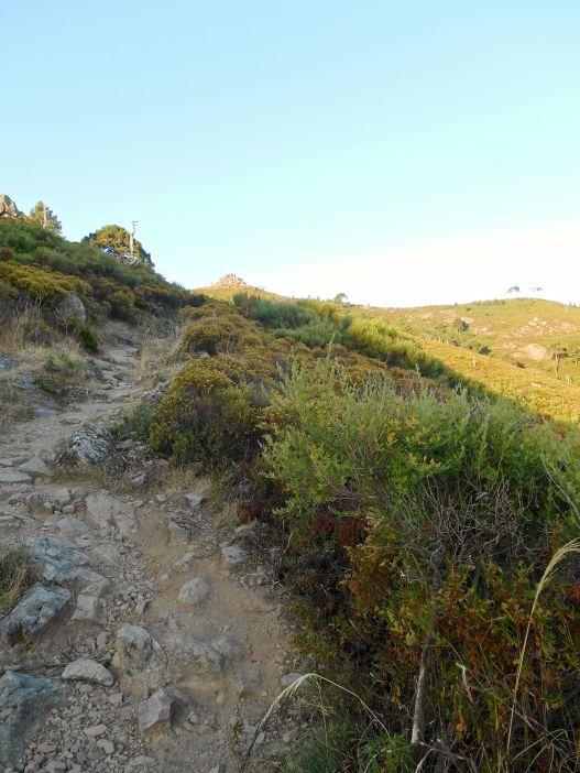 Droga w stronę skrzyżowania ze szlakiem Mare e Monti oraz Bocca u Corsu (581 m).