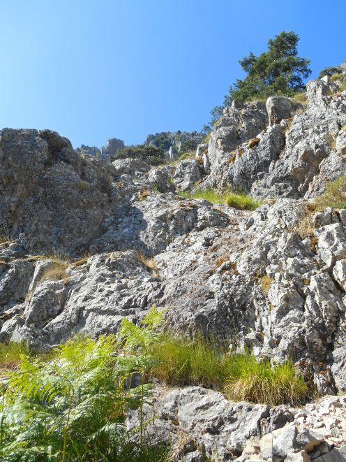 Północne zbocze Capu Ghiovu.