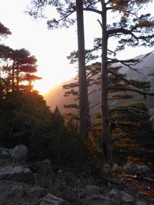 Wyruszamy na szlak wraz ze wschodem słońca – kierunek południowy-zachód. Na początku droga wiedzie wśród drzew, następnie ustępuje miejsca kamieniom – znajdujemy się na morenie – pozostałości po lodowcu.
