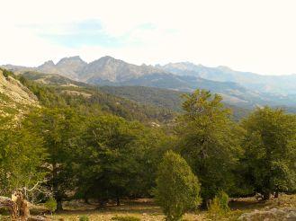 Powoli zbliżam się do kolejnej przełęczy Bocca San Petru (1452 m). Po lewej stronie widać dwa znane już szczyty – Capu Tafunatu i Paglia Orba.