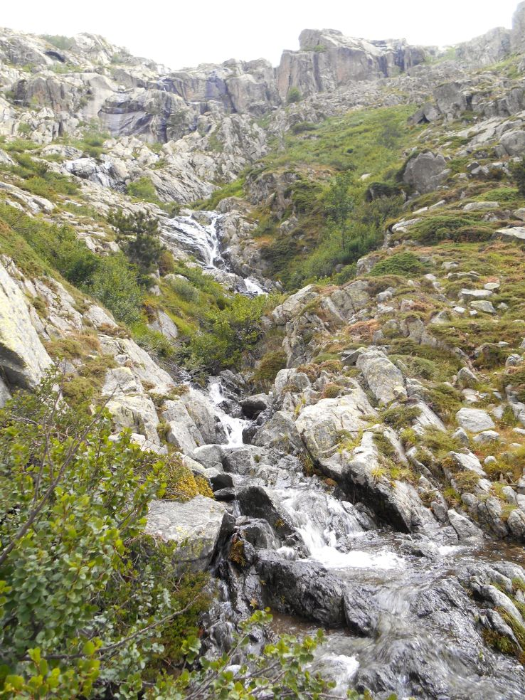 Szlak wiedzie przez liczne strumienie, które plątają się ze ścieżkami obranymi przez wędrowców. Po kolei przechodzimy przez trzy wąwozy – Manganellu, Tribali i Giorgino (oraz odpowiadające im imiennie strumyki).