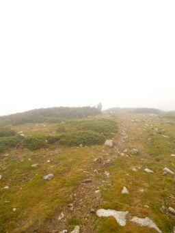 Początek szlaku to przejście na grani, która łączy przełęcz Bocca d'Oreccia i szczyt Punta Muratellu (2020 m).