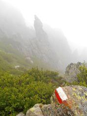 Po kilkunastu minutach dochodzę do rozwidlenia dróg – jedna z nich kieruje się w stronę szczytu Monte d'Oro (2389 m), druga w dół, w stronę Kaskady Anglików (klasyczny szlak GR20). Po krótkim spojrzeniu w stronę Monte d'Oro, obieram kierunek południe i Kaskada Anglików.
