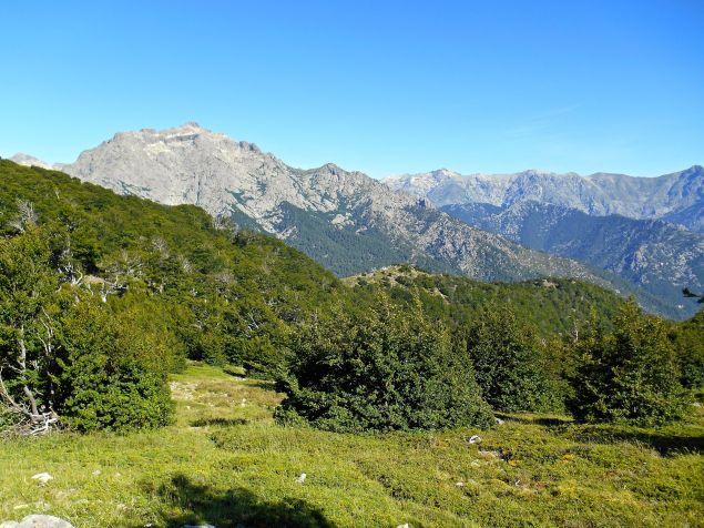 Wychodząc z lasu widok rozpościera się na Monte d'Oro (2389 m).