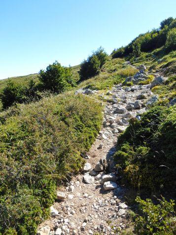 Szlak w pobliżu Bocca Palmente. Ładna pogoda pozwala cieszyć się widokami.