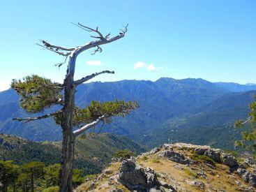 Kierując się na południowy-wschód dochodzimy do grani U Cardu (1515 m) skąd rozpościera się widok na wschodnie zbocze Monte Rinosu (2352 m) – szczyt, na który uda mi się wejść następnego dnia.