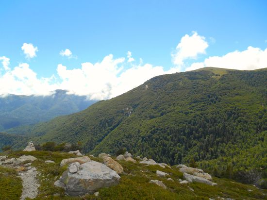 Po krótkiej przerwie kieruję się w stronę Plateau de Ghjalgone.