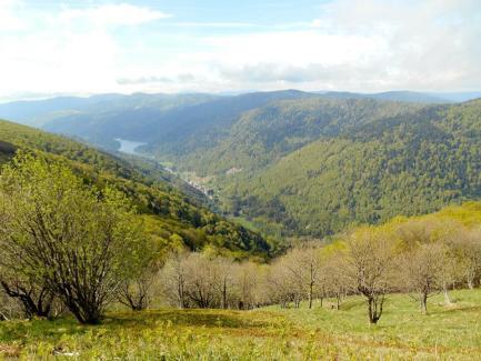 W drodze na przełęcz Schlucht (Le col de la Schlucht) poprzez La Route des Crêtes (Drogę Grań).