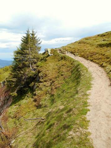 W stronę przełęczy Schaefferthal (1228 m).