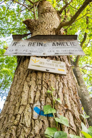 Droga królowej Amelii.