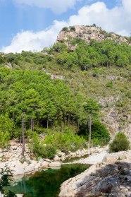 W drodze do Salenzary na wschodnim wybrzeżu Korsyki.