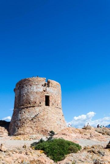 Wieża Turghio.