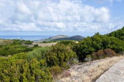 W drodze na północ Cap Corse.