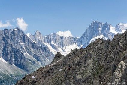 Od prawej w tle - Grandes Jorasses, col des Hirondelles, Petites Jorasses i Aiguille de Leschaux (3759 m).