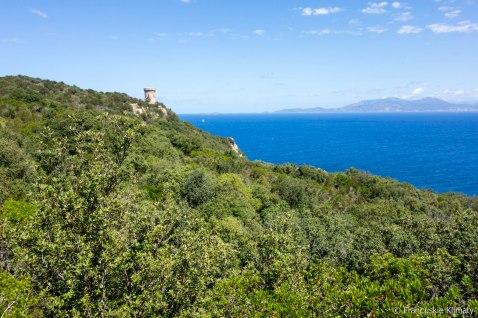 Wieża Capu di Muru / Tour Capu di Muru.