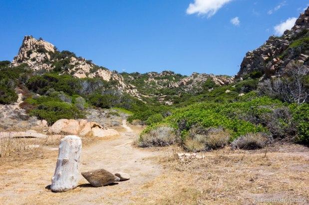 Zatrzymujemy się przy Punta Rinella na mały posiłek / Nous faisons une pause près de Punta Rinella pour pique-niquer.
